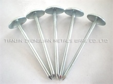 EG Umbrella Head Roofing Nails