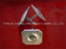 Square Metal Cap Nail